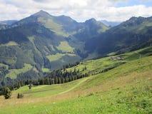 Fjällängarna - sikt av bergmaxima i Österrike Royaltyfria Bilder