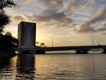 fjärd över solnedgång fotografering för bildbyråer