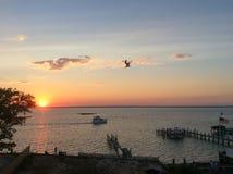 fjärd över solnedgång Royaltyfri Fotografi