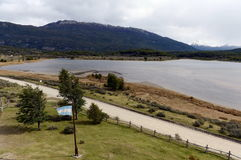 Fjärd Lapataia i nationalparken av Tierra del Fuego fotografering för bildbyråer