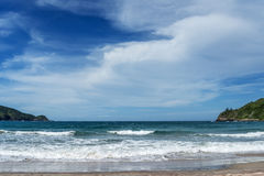 Fjärd med stranden Royaltyfria Bilder