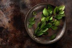 fjärd torkade leaves Fotografering för Bildbyråer