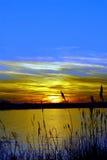 fjärdchesapeakemaryland solnedgång Arkivbild