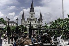 Fjärdedel för St Louis Cathedral New Orleans French, Decatur gata royaltyfria foton
