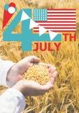 Fjärdedelen av det Juli diagrammet med flaggor och glass mot cornfield och händer fyllde med havre Royaltyfria Bilder