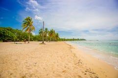 Fjärden av svin, playa Giron, Kuba royaltyfri bild