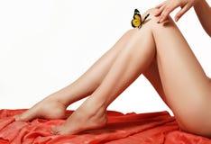 fjäril 3d på kvinnors silkeslena ben Arkivfoton