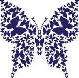 Fjäril för stencilsymmetriöversikt från mörker - blåa fjärilar Fotografering för Bildbyråer