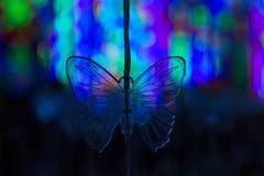 Fjäril formade dekorativa ljus Royaltyfria Foton
