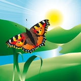 Fjäril i landskap royaltyfri illustrationer