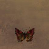 Fjäril i vattenfärg på tappningbakgrund Arkivbild