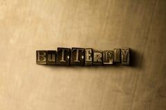 FJÄRIL - närbild av det typsatta ordet för grungy tappning på metallbakgrunden royaltyfri illustrationer