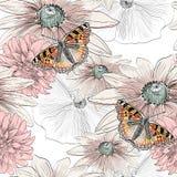 Fjäril och blommor Arkivfoto