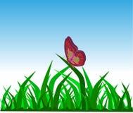 Fjäril på gräs Royaltyfria Foton