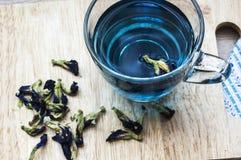 Fjäril Pea Tea Arkivbild