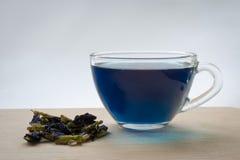 Fjäril Pea Tea Arkivbilder