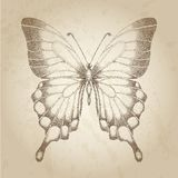 Fjäril som målas i grafiska stilpunkter. Älskvärt kort i retro stil Royaltyfri Foto