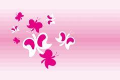 fjärilar Royaltyfri Fotografi
