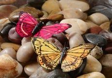 fjärilar Royaltyfri Bild