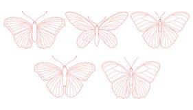 Fjärilar för en olik design Royaltyfria Bilder