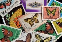 Fjärilar på stämplar royaltyfria foton