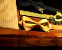 Fjärilar, slipsar och scarves för män och kvinnor Arkivfoton