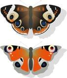fjärilar två Royaltyfri Bild