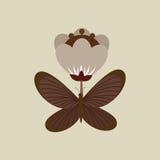 fjärils- och blommadesign Royaltyfri Foto