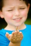 fjärilsbarnholding Fotografering för Bildbyråer