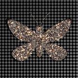 Fjärilsdiamanter på en genomskinlig bakgrund mousserar Arkivfoton