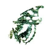 fjärilsfärgpulverstämpel Royaltyfria Bilder