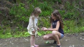 Fjärilsflickan visar mer ung syster lager videofilmer