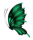 fjärilsgreen Royaltyfria Bilder