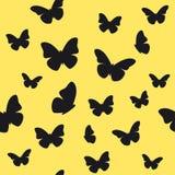 fjärilsmodell Arkivbilder