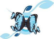 fjärilsmorpho royaltyfri illustrationer