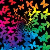 fjärilsregnbåge Royaltyfri Foto