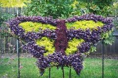 Fjärilsträdgård royaltyfria bilder