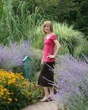 fjärilsträdgården går Royaltyfria Bilder