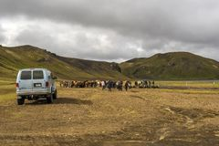 Eople preparing for Icelandic horse riding in Fridland ad Fjallabaki Natural park in Highlands of Iceland. Fjallabak, Iceland – 21 July, 2018 People stock images