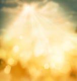 Fjäderbokehbakgrund Royaltyfri Fotografi