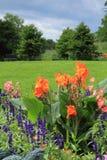 Fjädra blommor Royaltyfri Fotografi