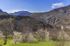 Fjädra i bergen nära byn av Lahij Azerbajdzjan Arkivbild