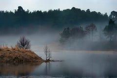 Fjädra landskapet på gryning av sjön i dimma Arkivbild