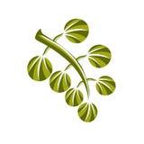 Fjädra symbolen, naturen och att arbeta i trädgården för vektor för blad den enkla temaillus Royaltyfri Bild