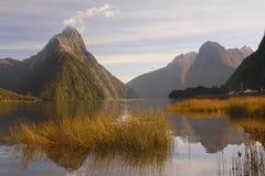 Fjord stockbild