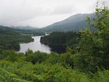 Fjord Ard - den Trossachs nationalparken - Skottland royaltyfria foton