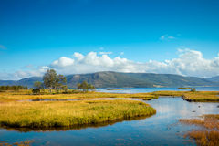 Fjord in autumn Stock Photography