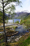 Fjord Coastal and Mountain Scene @Geiranger Royalty Free Stock Images