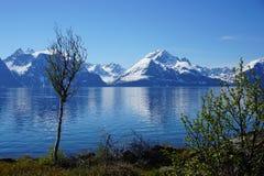 Fjord dichtbij Olderdalen Stock Foto