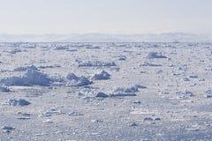 Fjord do gelo Fotos de Stock